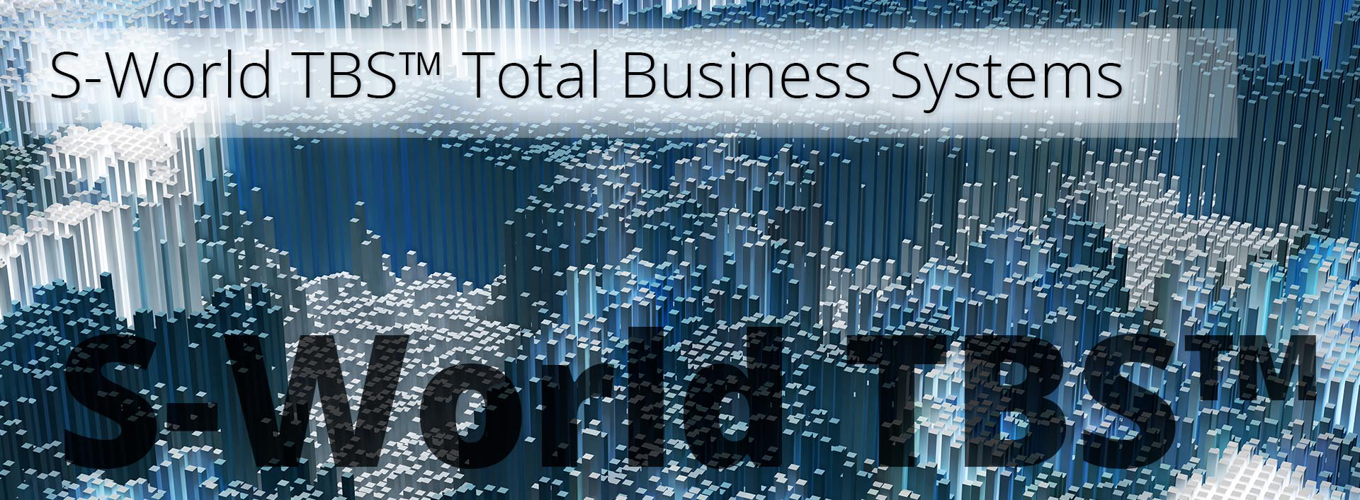 S-World TBS-Total Business Systems
