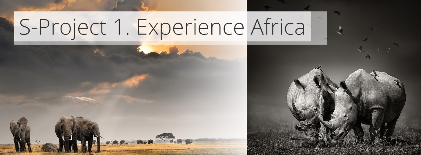 S-Project 1 Experience Africa